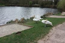 Capstone Farm Country Park Cafe, Gillingham, United Kingdom