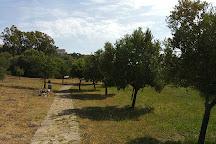 Pozzo Sacro Sa Testa, Olbia, Italy