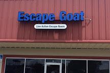 Escape Goat, Winter Garden, United States
