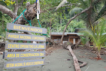 Surcos Tours, Puerto Jimenez, Costa Rica