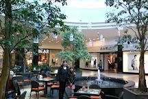 Lotus Center, Oradea, Romania