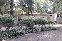 Vikram Kirti Mandir Museum, Ujjain, India