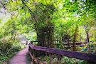 Northlake Nature Center