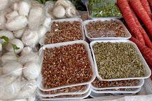 INA Market, New Delhi, India