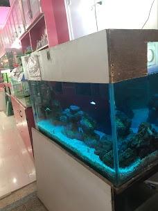 Kunal Aquarium Gwalior gwalior