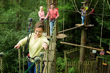 Go Ape Grizedale, Hawkshead, United Kingdom