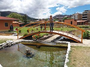 Movil Tours Cajamarca 2
