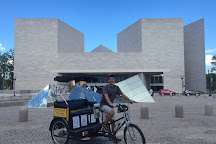 Nonpartisan Pedicab, Washington DC, United States