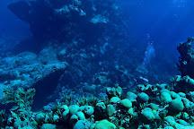 Dive Bermuda at Grotto Bay, Hamilton, Bermuda