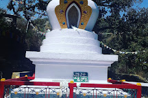 Shedup Choepelling Temple, Mussoorie, India