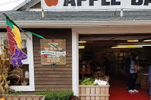 Woodstock Orchard, Woodstock, United States