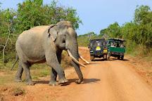 Sampath Tours & Travels, Hikkaduwa, Sri Lanka