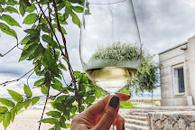 Pulenta Estate Winery, Agrelo, Argentina