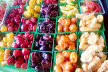 State Farmers Market, Raleigh, United States