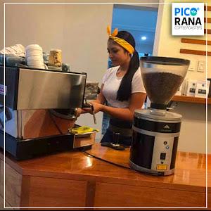 PICORANA COFFEE ROASTERS 1