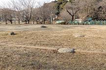 Ruins of Musashi Kokubunji Temple, Kokubunji, Japan