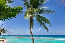 Worthing Beach, Christ Church Parish, Barbados