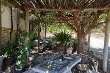 Herold Wine Estate, George, South Africa