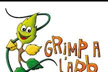 Grimp a L'Arb, Pierrefonds, France