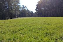 Wannamaker County Park, North Charleston, United States