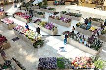 Shopping Campo Grande, Campo Grande, Brazil