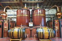 Cognac Tasting Tour, Cognac, France