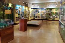 Museo de San Ramon (Museum of San Ramon), San Ramon, Costa Rica
