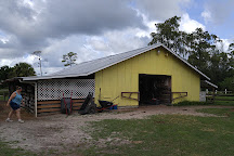 La Petite Cheval Farm, Loxahatchee, United States