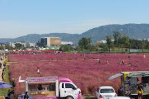 Nari Park, Yangju, South Korea