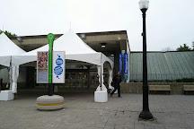 Centre Eaton de Montreal, Montreal, Canada