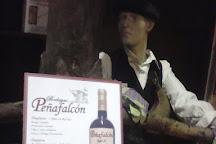 Bodegas Penafalcon, Penafiel, Spain