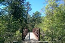 Tuxachanie Hiking Trail, Saucier, United States