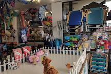 Rehoboth Toy & Kite, Rehoboth Beach, United States