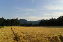 Godešič Meadows, Škofja Loka, Slovenia