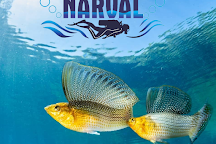 Centro De Buceo Narval, San Andres Island, Colombia
