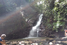 Edmund Forest Reserve, St. Lucia
