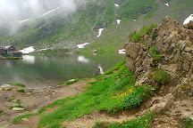 Fagaras Mountains, Sambata de Sus, Romania