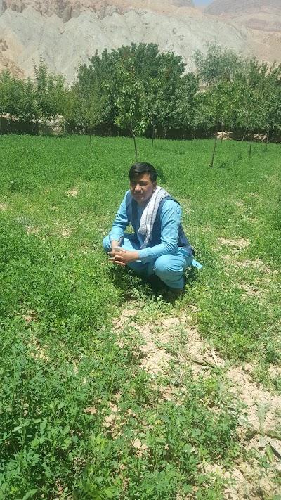 Saighan