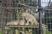 Welsh Mountain Zoo, Colwyn Bay, United Kingdom