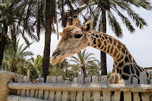 Rio Safari Elche, Elche, Spain