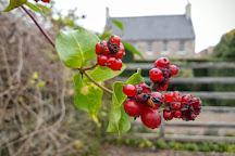 Dunbars Close Garden, Edinburgh, United Kingdom