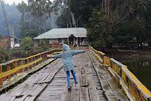 Reserva Nacional Laguna Torca, Llico, Chile