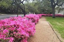 Lillie and Hugh Roy Cullen Sculpture Garden, Houston, United States