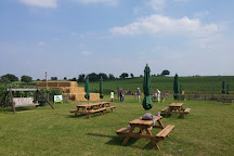 North Norfolk Wizard Maze and Play, Norwich, United Kingdom