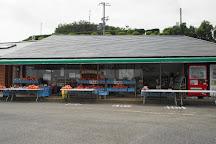 Awajihanasajiki, Awaji, Japan
