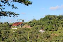 Sanhacu, Cha Grande, Brazil