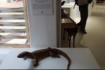 National Museum, Gaborone, Botswana