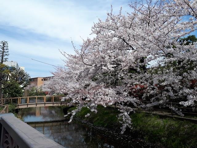 Itoya Park