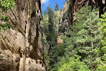 Orderville Canyon, Zion National Park, United States