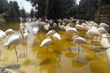 Tehran Bird Garden, Tehran, Iran